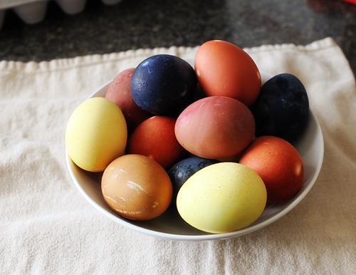 Eggexperiment2